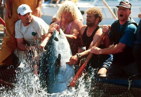 Riapre la storica tonnara di Favignana. «Sarà una pesca eco sostenibile»